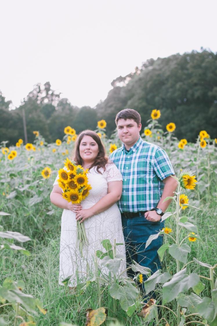 170715-Sunflower-Web-112
